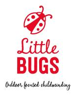 Little Bugs Pic